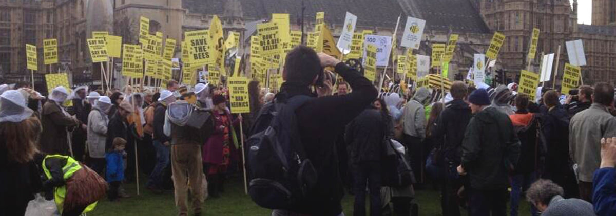 Printed Placards - Save the Bees 1 7