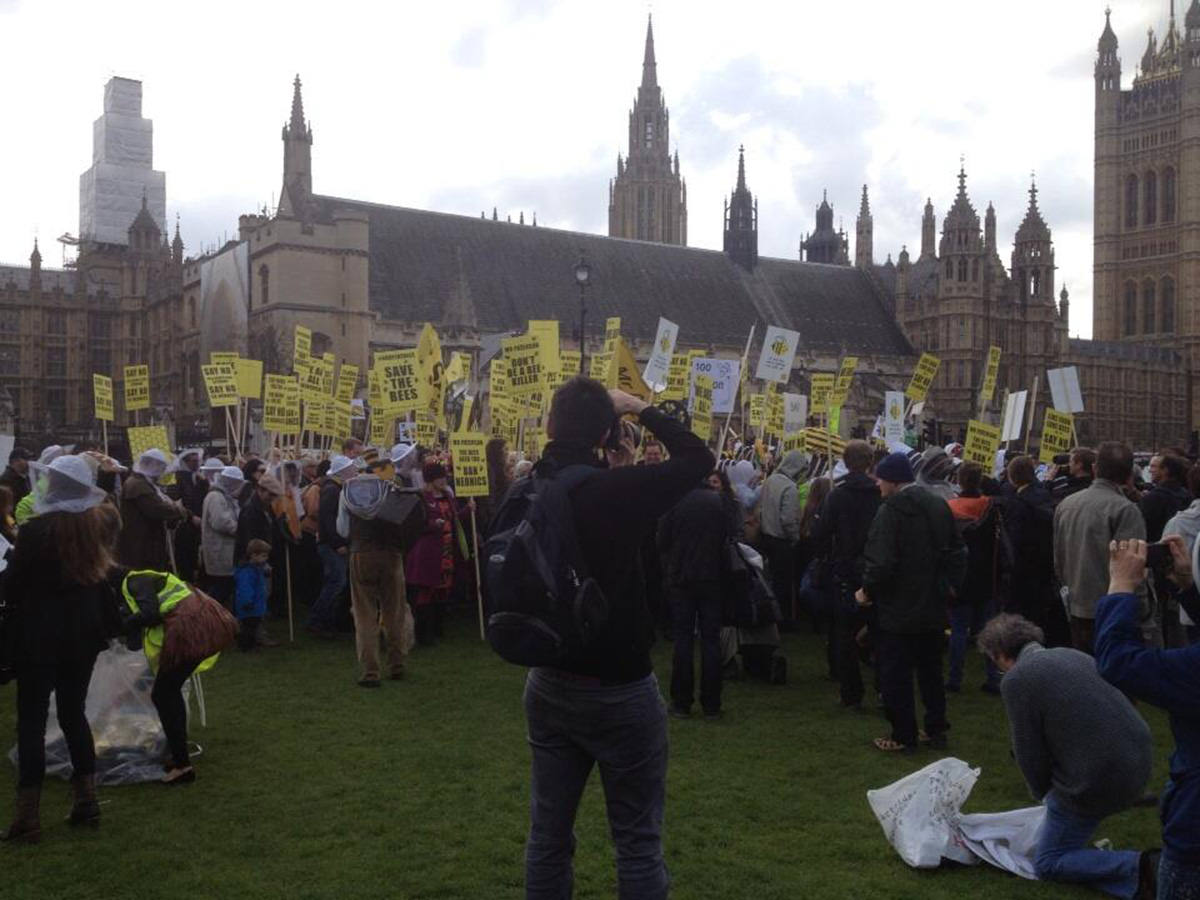 Printed Placards - Save the Bees 1