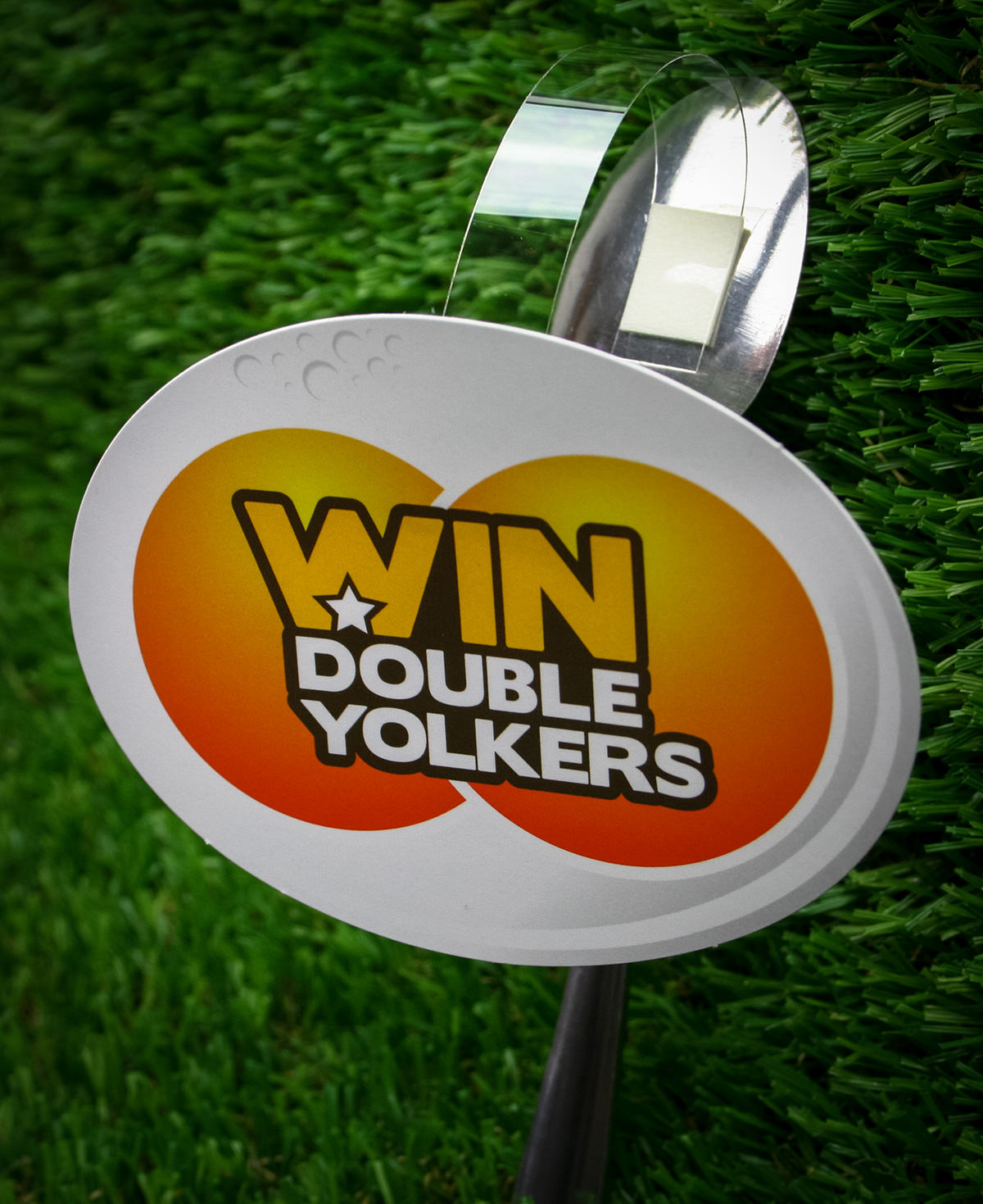 Display-Wobblers---Double-Yolkers-2